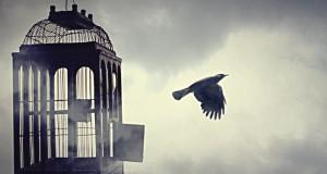 Година тежње за слободом