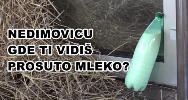 Nedimović dokazao da je nesposoban za ministra